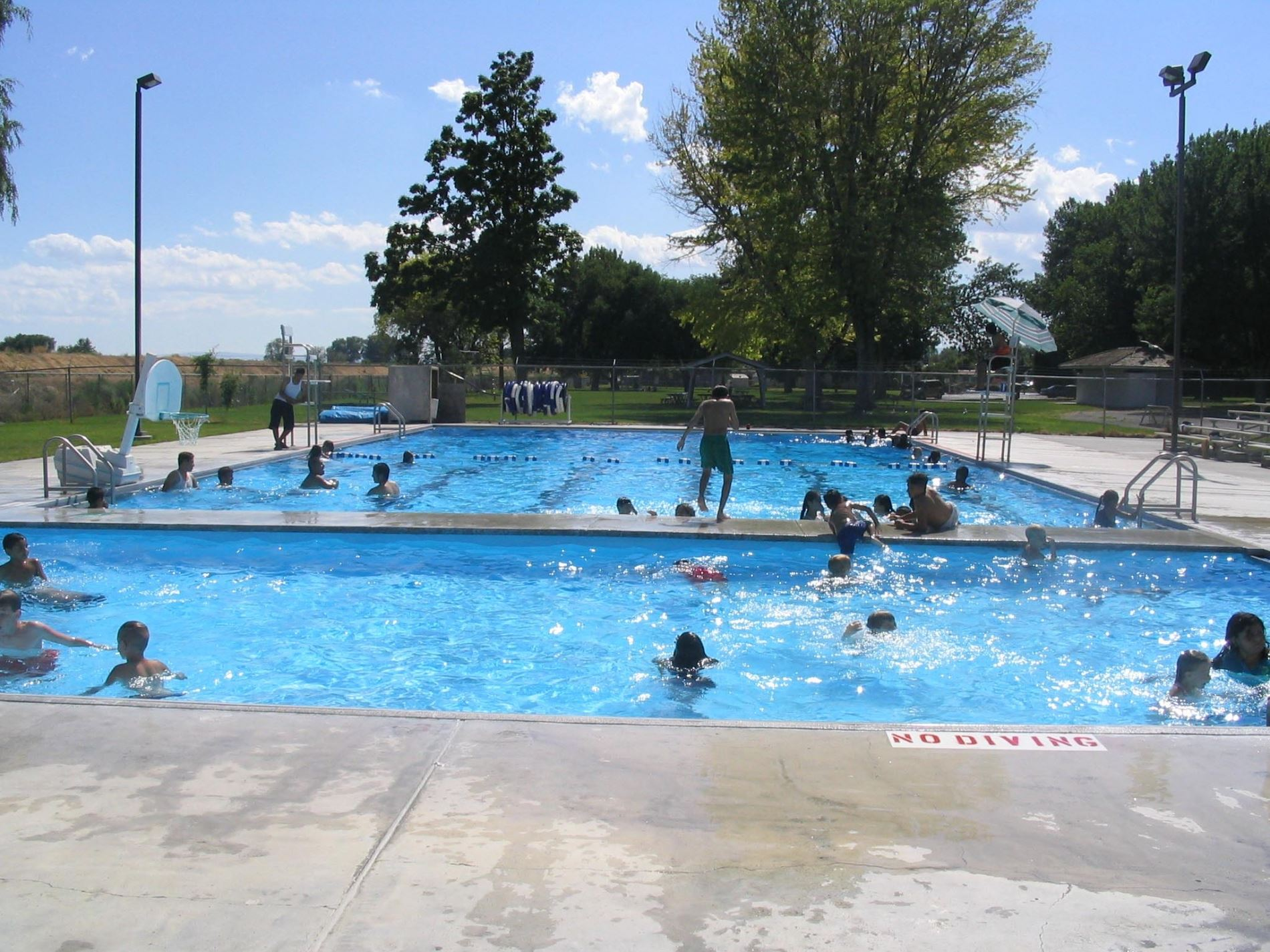 Many people playing in the pool